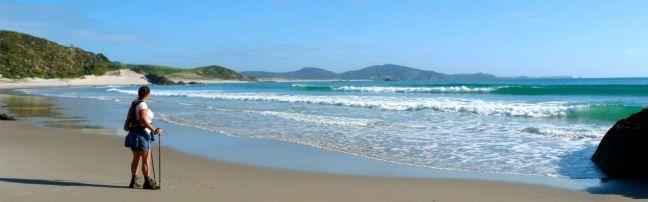 Ocean_Beach_Walk_Whangarei_Heads_1280_400_80_c1